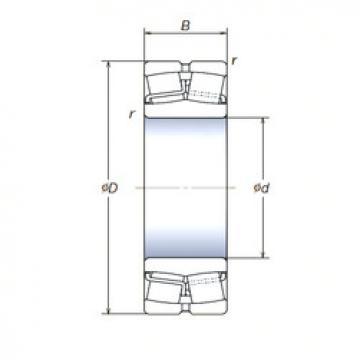 Spherical Roller Bearings 22210SWREAg2E4 NSK