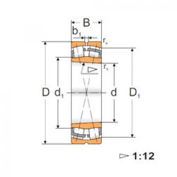 Spherical Roller Bearings 22224 KW33 MPZ