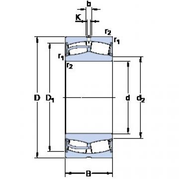 Spherical Roller Bearings 22228-2CS5/VT143 SKF