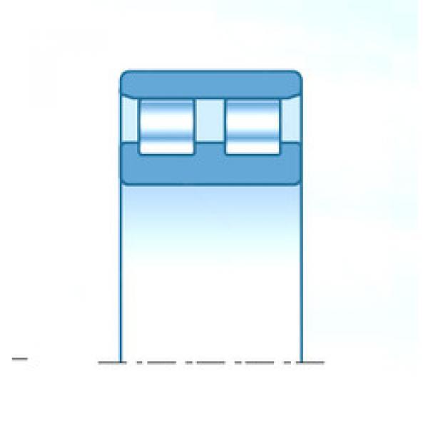 Cylindrical Bearing NN3040C1NAP5 NTN #1 image