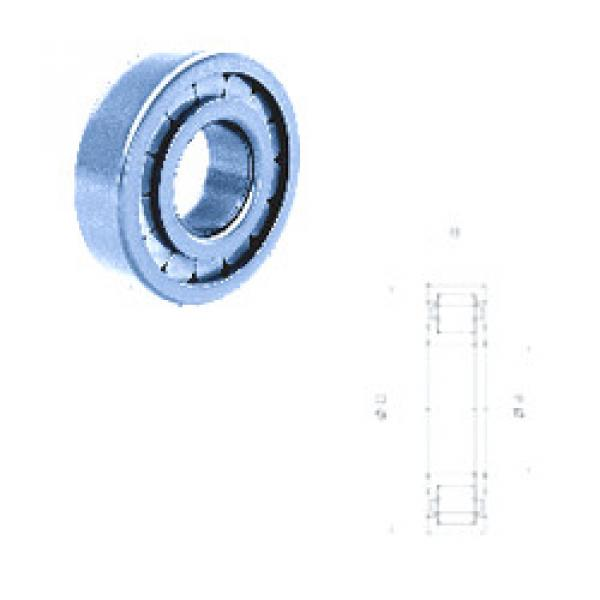 Cylindrical Roller Bearings Distributior NUP209FM Fersa #1 image