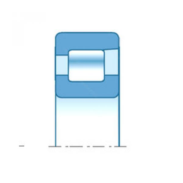 Cylindrical Bearing NF206E NTN #1 image