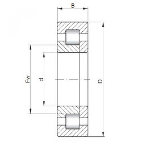 Cylindrical Roller Bearings Distributior NUP214 ISO #1 image