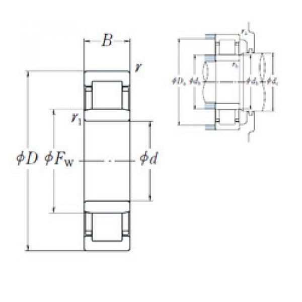 Cylindrical Roller Bearings Distributior NU 264 NSK #1 image