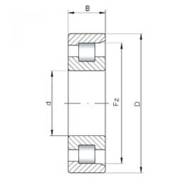Cylindrical Bearing NF307 E CX #1 image