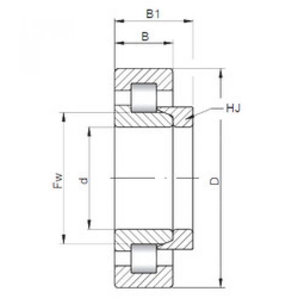 Cylindrical Bearing NH211 E CX #1 image