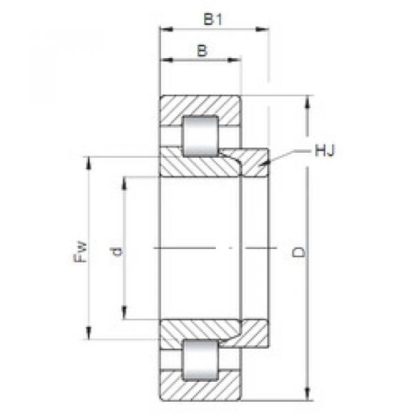 Cylindrical Bearing NH320 E CX #1 image