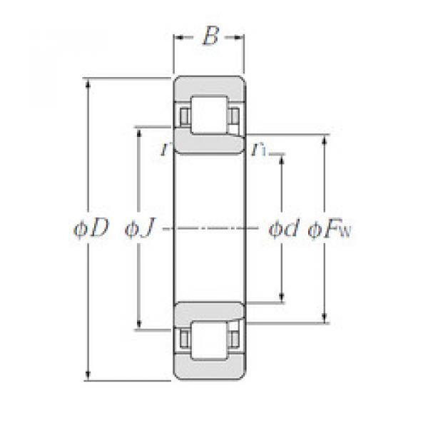 Cylindrical Bearing NJ1022 CYSD #1 image