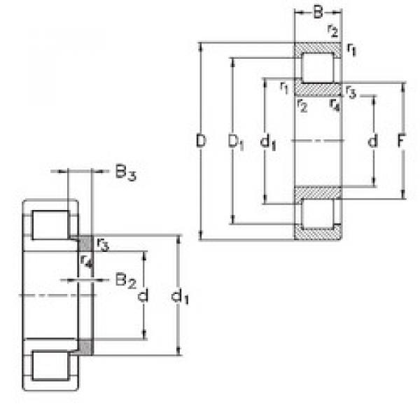 Cylindrical Bearing NJ332-E-M6+HJ332-E NKE #1 image
