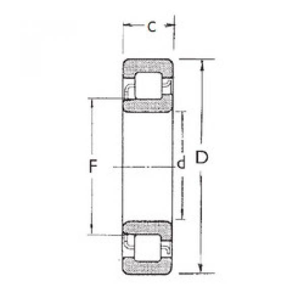 Cylindrical Bearing NJ305 FBJ #1 image