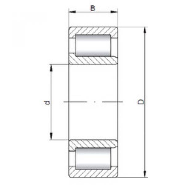 Cylindrical Bearing NJF2311 V CX #1 image