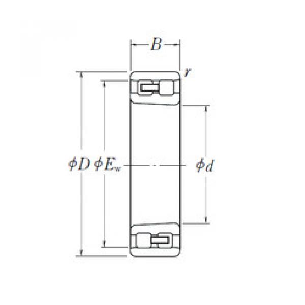 Cylindrical Bearing NN 3044 K NSK #1 image