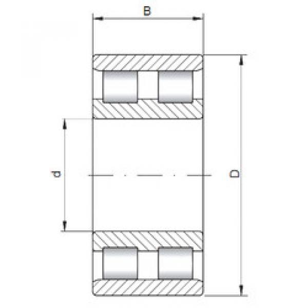 Cylindrical Bearing NN3019 CX #1 image