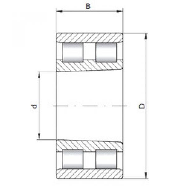 Cylindrical Bearing NN3021 K CX #1 image