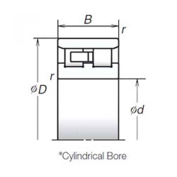 Cylindrical Bearing NN3008TB NSK #1 image