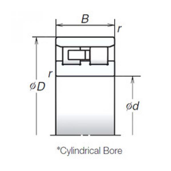 Cylindrical Bearing NN3011TB NSK #1 image