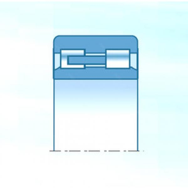 Cylindrical Roller Bearings Distributior NNU4930C1NAP5 NTN #1 image