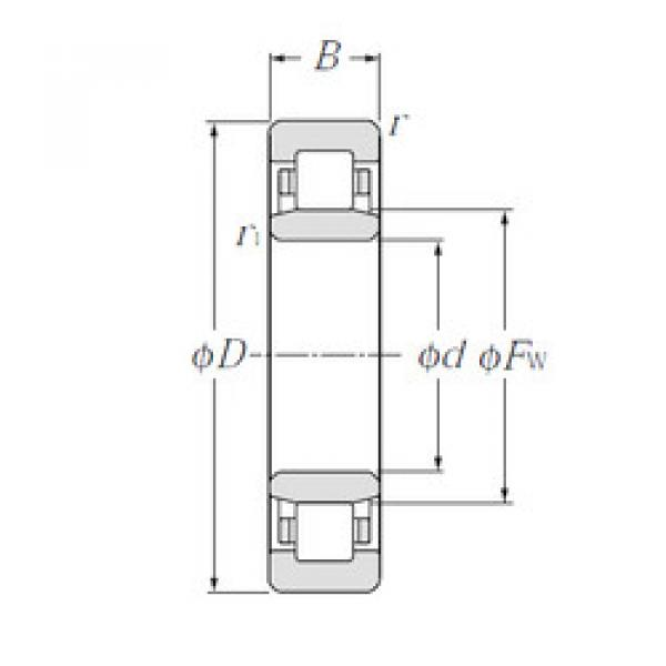 Cylindrical Roller Bearings Distributior NU1005 CYSD #1 image