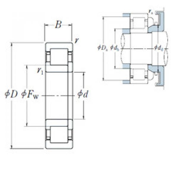 Cylindrical Roller Bearings Distributior NUP1008 NSK #1 image