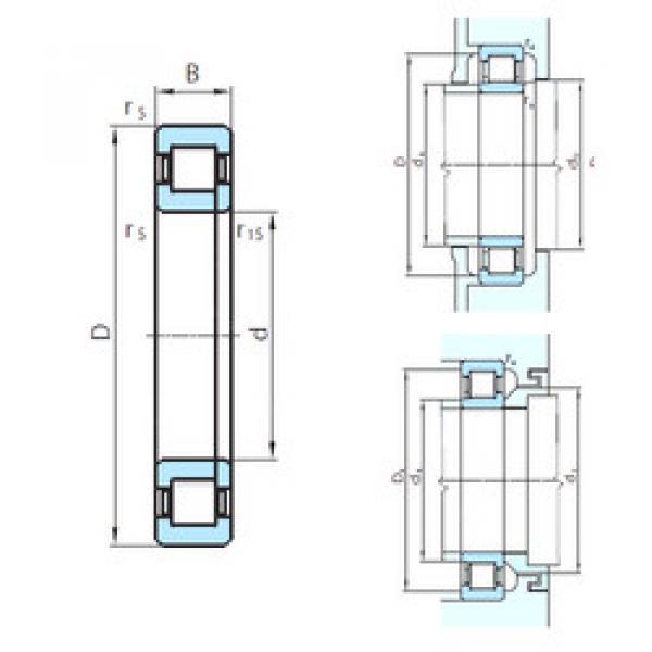 Cylindrical Roller Bearings Distributior NUP1052 PSL #1 image