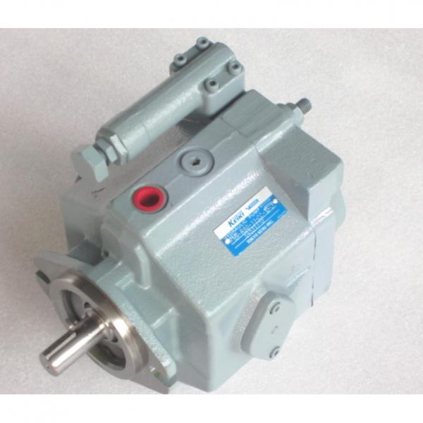 TOKIME Japan vane pump piston  pump  P21V-RS-11-CG-10-J   #2 image