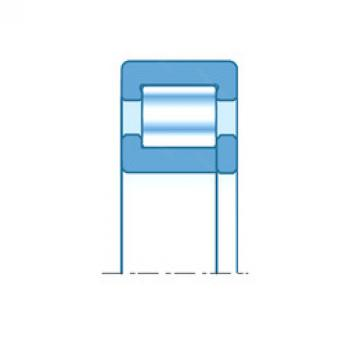 Cylindrical Roller Bearings Distributior NUP206 NTN