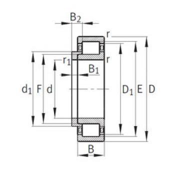 Cylindrical Bearing NJ252-E-M1+HJ252-E FAG