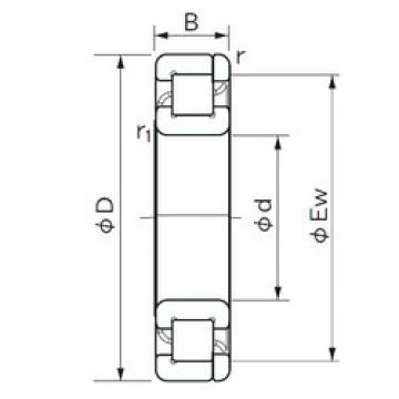 Cylindrical Roller Bearings Distributior NP 1021 NACHI