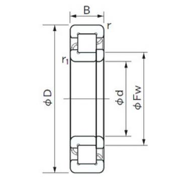 Cylindrical Roller Bearings Distributior NUP 322 NACHI
