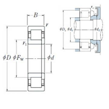 Cylindrical Roller Bearings Distributior NUP1008 NSK