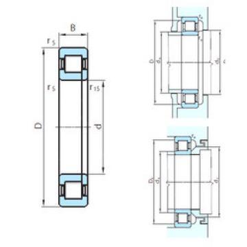 Cylindrical Roller Bearings Distributior NUP29/1000 PSL