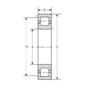 Spherical Roller Bearings 20212 KVP SIGMA