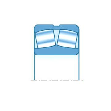 Spherical Roller Bearings 238/1120 NTN