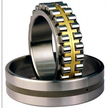 CYLINDRICAL ROLLER BEARINGS TWO Row NNU40/500MAW33