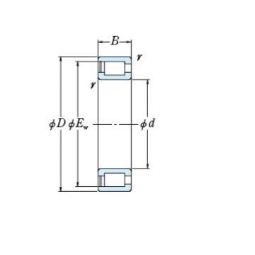 FULL-COMPLEMENT CYLINDRICAL ROLLER BEARINGS JAPAN RS-5036
