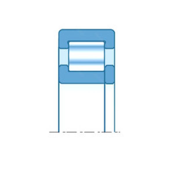 Cylindrical Roller Bearings Distributior NUP204E/22 NTN #1 image