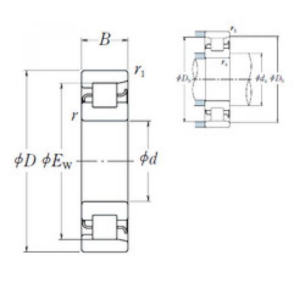 Cylindrical Bearing NF 244 NSK #1 image
