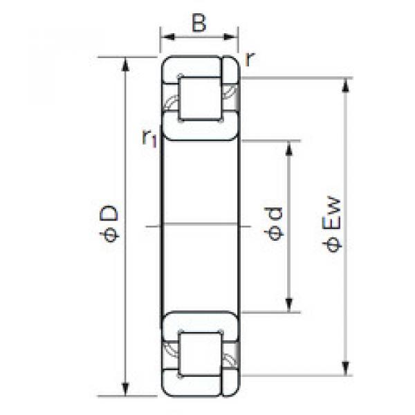 Cylindrical Roller Bearings Distributior NP 1034 NACHI #1 image