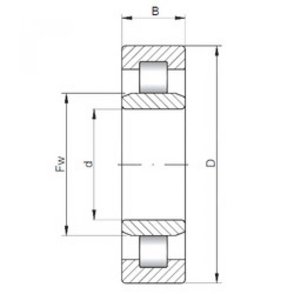 Cylindrical Roller Bearings Distributior NU1872 ISO #1 image