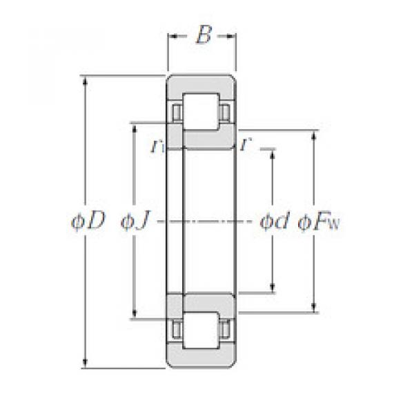 Cylindrical Roller Bearings Distributior NUP1048 NTN #1 image