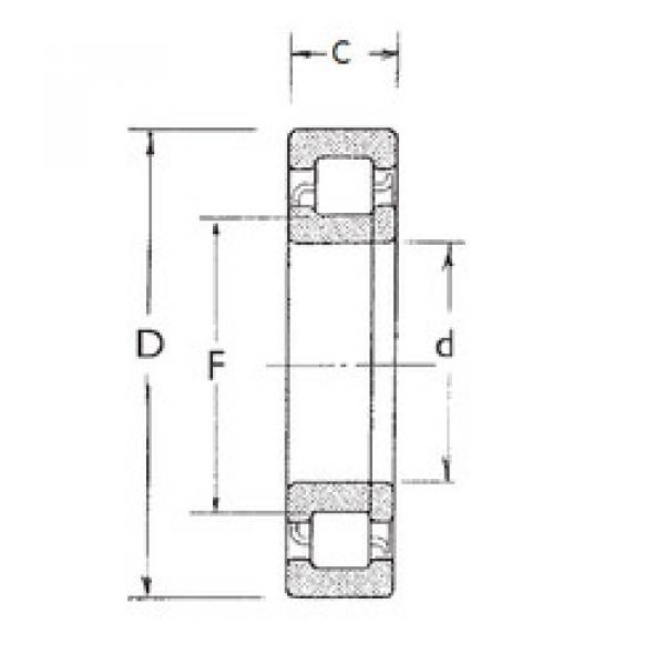Cylindrical Roller Bearings Distributior NUP211 FBJ #1 image