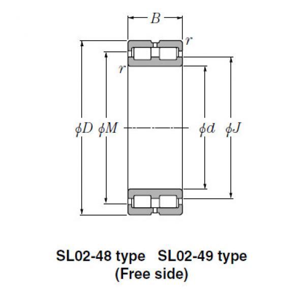 SL Type Cylindrical Roller Bearings NTN SL02-4844 #1 image